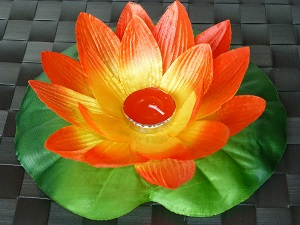 Red lotus flower floating lanterns