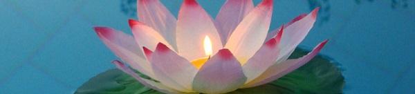Lanterne Galleggiante Fiore di loto Bianco screziato